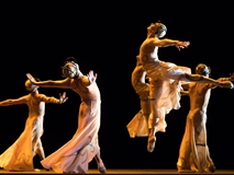 February Seminar: Ballet and Opera Intertwined